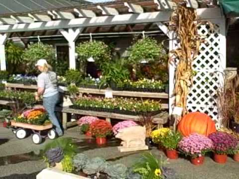 Beau Garden Treasures AUTUMN SALE (Matthewstown Rd, Off Route 50   Easton, MD)