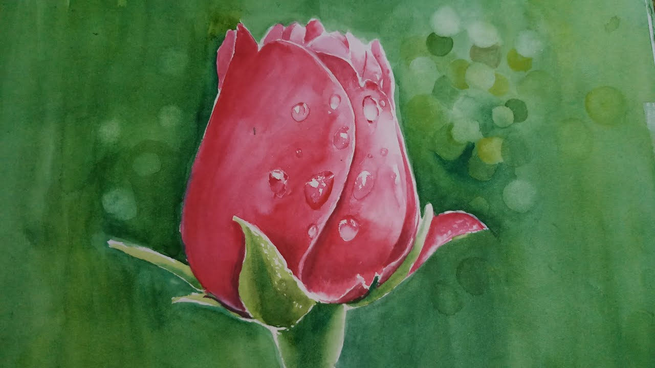 How to draw rose | water drops | Realistic watercolour painting | details demo #1