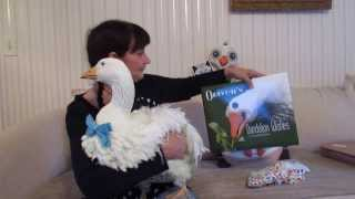 Unique Pet Diapered Goose Oliver YOU CAN'T POTTY TRAIN a GOOSE! BOOK