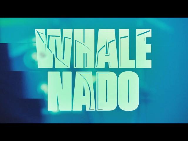 Whale Nado - Candidates (live at La Cachorra yeyé)