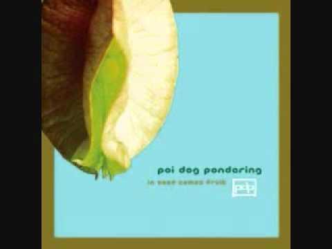 you move me - poi dog pondering