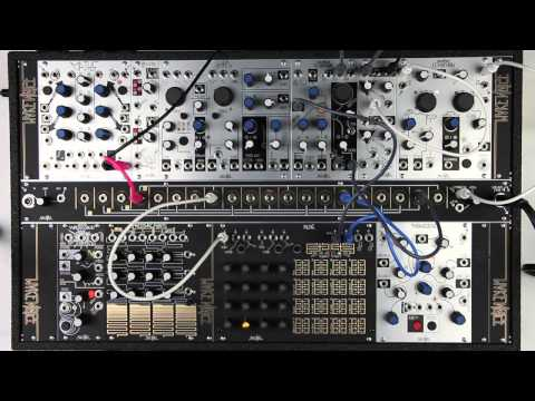 System Tutorial: Multi-Channel Sequencing w/ René