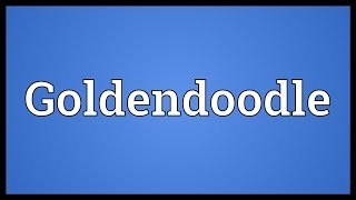 Goldendoodle Meaning