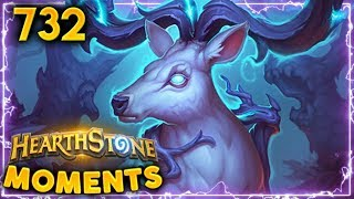 ONLY PRO PLAYS HERE!! | Hearthstone Daily Moments Ep. 732