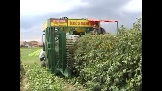 Kombajn za maline i kupine / Harvesting machine for raspberry and blackberry