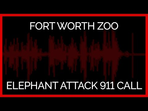 Fort Worth Zoo Elephant Attack 911 Call