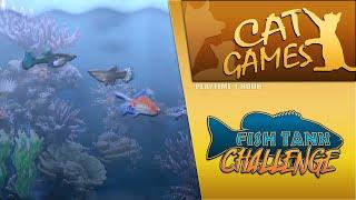 CAT GAMES - FÏSH TANK CHALLENGE (MEMORY LANE)