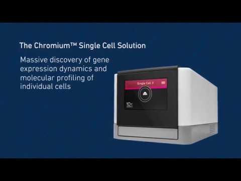 10x Genomics Chromium Single Cell 單細胞解析系統原理 - 威健生技