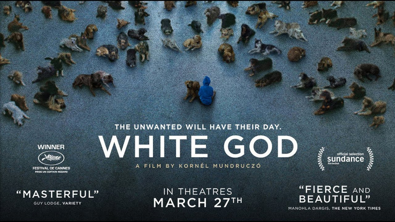 White God - Official Trailer - YouTube