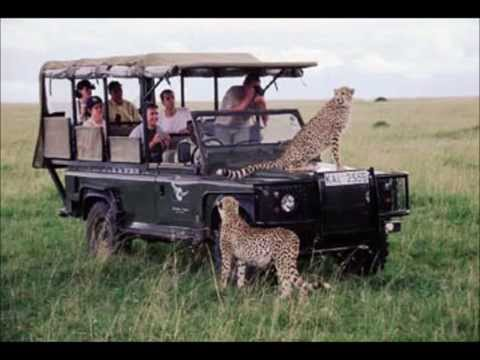 Kenya Safari Tours to Amboseli, Masai Mara, Rift Valley