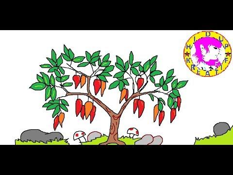 Cara Menggambar Pohon Cabai Youtube