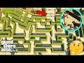 GTA 5 - Can CHOP SOLVE a Maze?