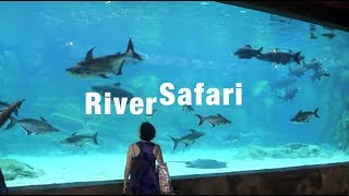 Singapore River Safari (LARGEST Freshwater TANK!!!!) (4/7/2013)