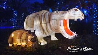 PNC Festival of Lights and Happy Holidays - Cincinnati Zoo