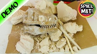 KAAN, DER ARCHÄOLOGE IST WIEDER DA! Dino Kopf ausgraben mit Ausgrabungs-Set! Tyrannosaurus-Rex
