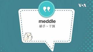 学个词--meddle