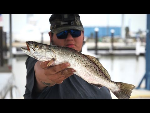 speckle trout CATCH,CLEAN,&COOK FREEPORT TX