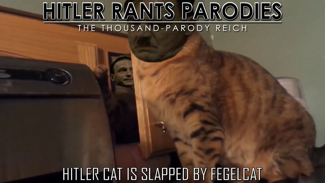 Hitler cat is slapped by Fegelcat