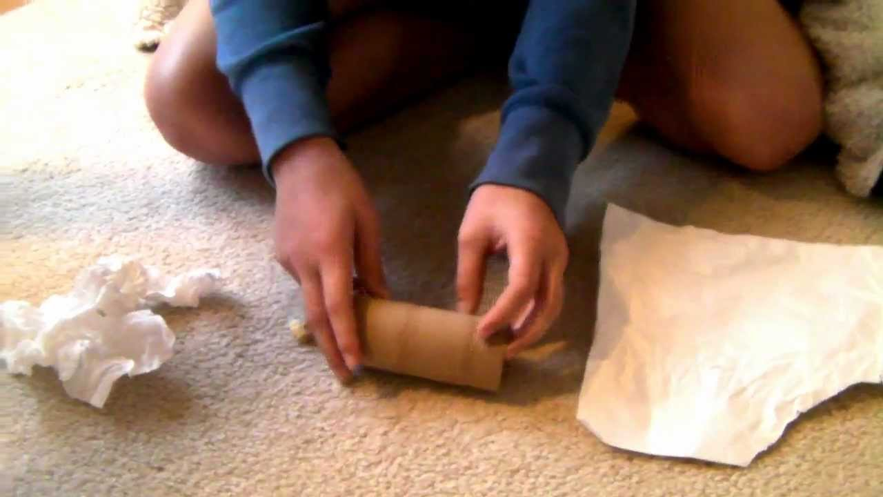 How To Make A Homemade Toilet Paper Roll Toy   YouTube Awesome Ideas