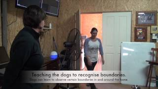 Canine Good Behaviour Shaping Day Seminar Aug 2013