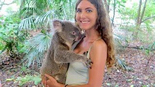 Hanging Out with Koalas, Kangaroos & More // Australia