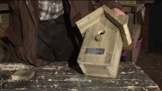 Making a Birdbox - Sustainable Somerset.mov