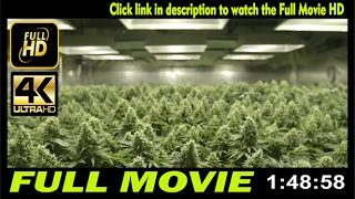 Watch Rolling Papers - full movies online