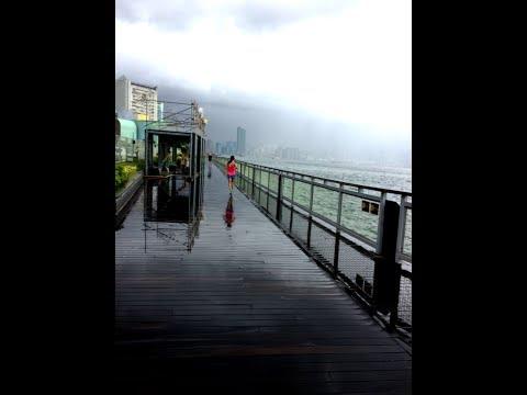Rainy Morning on 24 July 2017 at Quarry Bay Park, Hong Kong