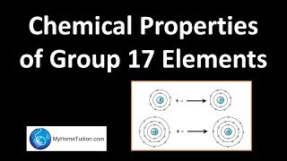Chemical Properties of Group 17 Elements | Periodic Table