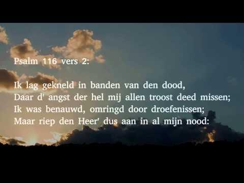 Psalm 116 vers 1, 2, 3 en 11 - God heb ik lief, want die getrouwe Heer'