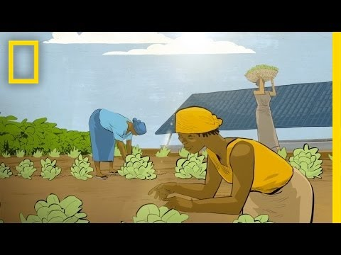 My Lightbulb Moment: Using Solar Energy to Feed a Village | National Geographic