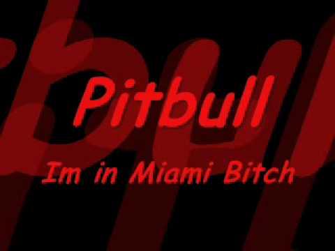 Pitbull  Im in Miami Bitch Dj Thomas Sena