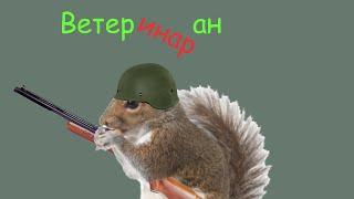 Белка ветеран