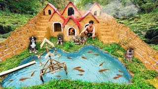 Rescue Abandoned Puppies Build Underground House For Dog And Fish Pond Around House Puppy