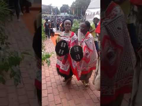 swazi's dance for house music