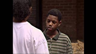 The Wire | Corner Boys Try To Catch A Bird