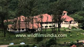 Munnar - Hill station of Kerala