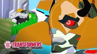 Lets Catch Us a Buffaloid! Official Clip Transformers Robots in Disguise Season 1