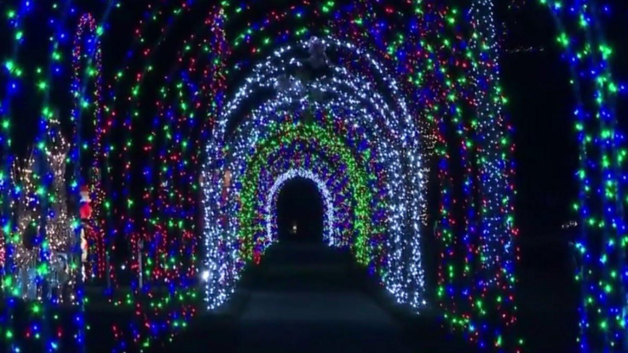 Eiffel Street Warren Mi Christmas Lights 2020 Tunnel of Lights' on Eiffel Street in Warren   YouTube