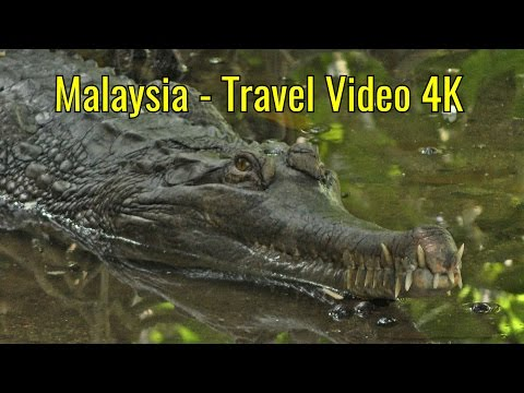 Malaysia - Travel Video 4K  Part 5
