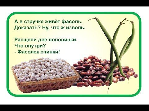 ТОП-8. ФАСОЛЬ - отличное лекарственное средство!