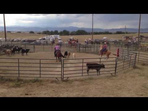 Tess Round 1A - Wellington, CO