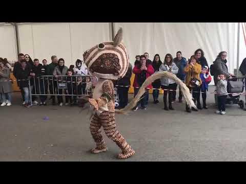Desfile de Entroido de Castro de Ribeiras de Lea