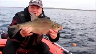 Рыбалка осенью в Астрахани октябрь 2015 (18+)
