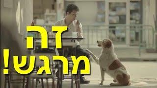 פרסומת תאילנדית נדירה שתגרום לך לבכות מהתרגשות