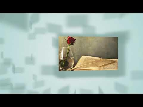 Buku harian lirik cover by andin
