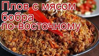 Рецепты из бобра - как приготовить бобра пошаговый рецепт - Плов с мясом бобра по-восточному