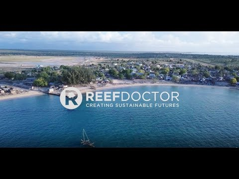 Artificial Reefs as a Solution to Over Fishing in SW Madagascar