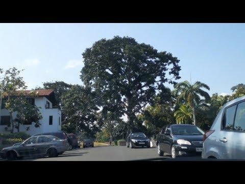 Ghana Vlog 2019: Driving To Legon Campus| University Of Ghana