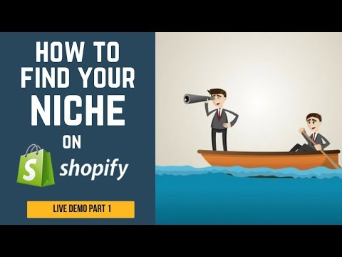 Building a Dropshipping Store From 0 to $100 / Day